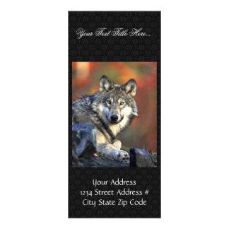 Lobo gris plantilla de lona