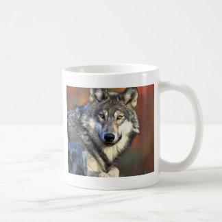 Lobo gris taza básica blanca