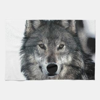 Lobo gris toalla