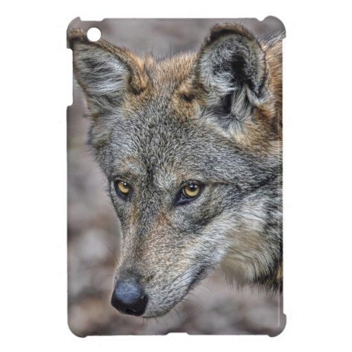 Lobo iPad Mini Cobertura