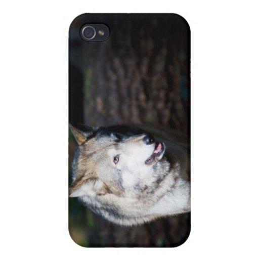 Lobo iPhone 4 Protector