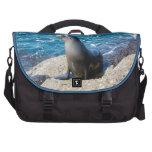 Lobo marino de las Islas Galápagos Bolsas Para Portatil
