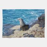 Lobo marino de las Islas Galápagos Toalla De Cocina