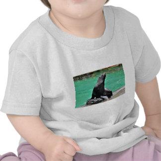 Lobo marino camiseta