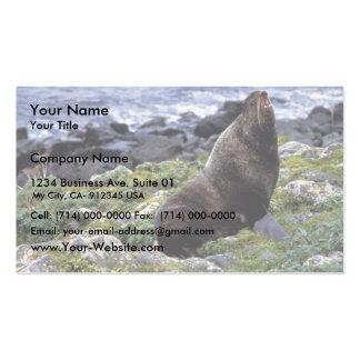 Lobo marino septentrional tarjetas personales