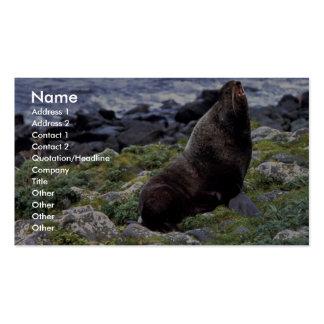 Lobo marino septentrional plantilla de tarjeta de negocio