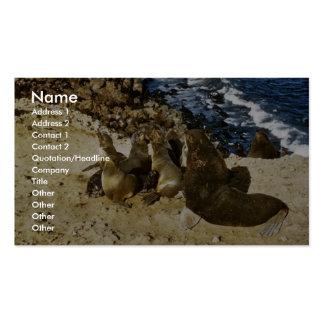 Lobo marino plantilla de tarjeta de visita
