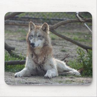 Lobo Mousepad de los lobos Tapete De Raton
