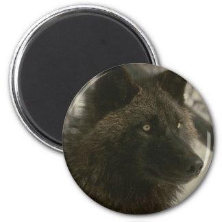 Lobo negro imán redondo 5 cm
