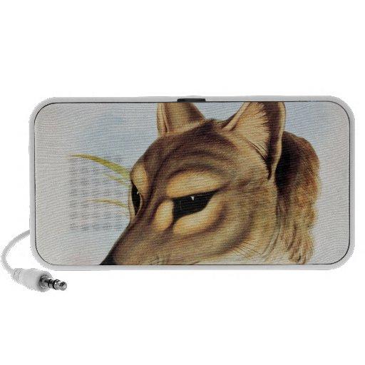 Lobo o tigre tasmano iPhone altavoces