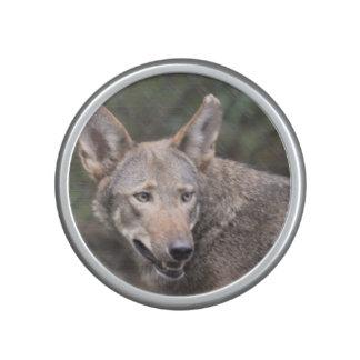 Lobo occidental altavoz bluetooth