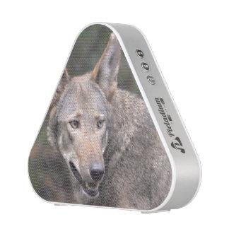 Lobo occidental altavoz