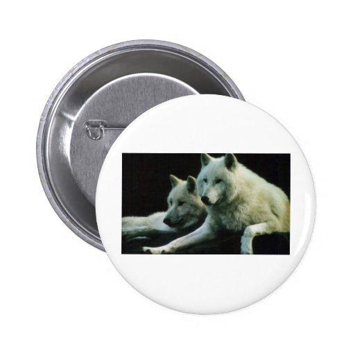 Lobo polar pin redondo de 2 pulgadas