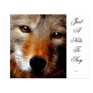 Lobo Postcard