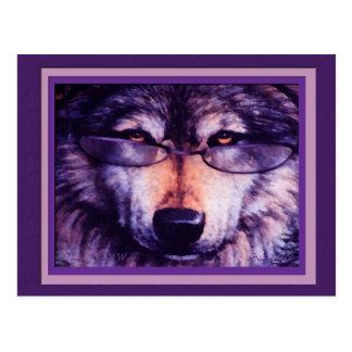 Lobo púrpura solitario tarjeta postal