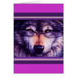 Lobo púrpura solitario tarjetón