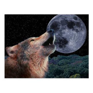 Lobo que grita en la Luna Llena - Postal