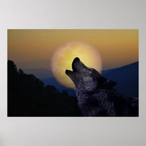 Lobo que grita en la luna póster