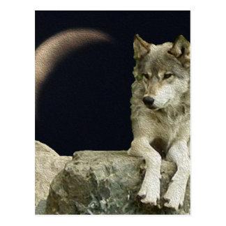 Lobo que se relaja postales