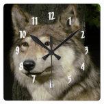Lobo Relojes De Pared