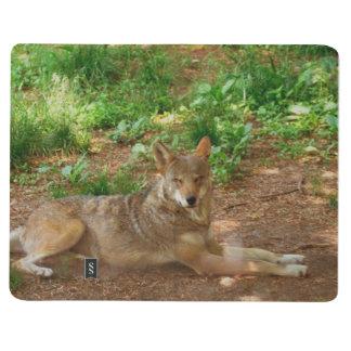 Lobo rojo de reclinación cuadernos grapados