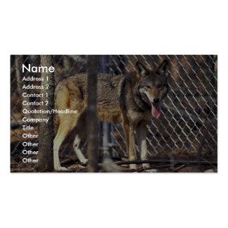 Lobo rojo tarjetas de visita