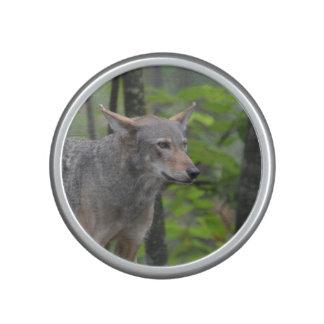 Lobo salvaje altavoz bluetooth