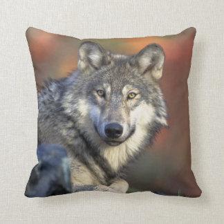 lobo salvaje cojin