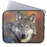 lobo salvaje fundas computadoras