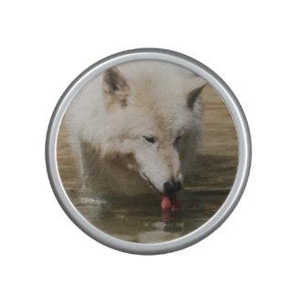 Lobo sediento altavoz bluetooth