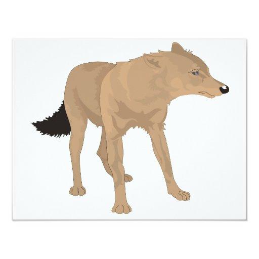 ¡Lobo solitario - colmillo del misterio! Comunicados Personalizados