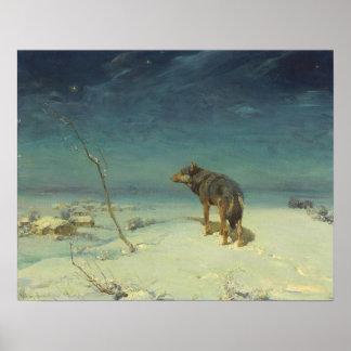 Lobo solitario de Alfred Kowalski en pintura al Póster