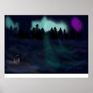 Lobo solitario por las luces póster
