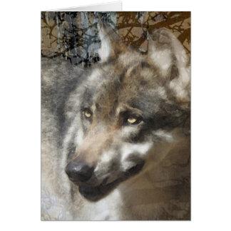 lobo tarjeton