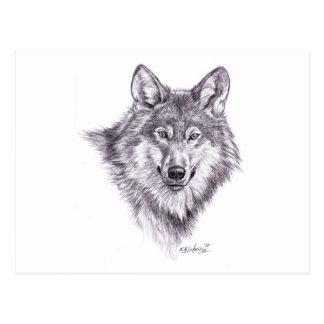 lobo postales