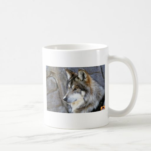 Lobo Tazas De Café
