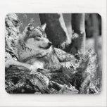 lobo vigilante alfombrillas de raton