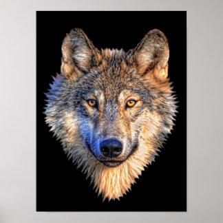 Lobo vigilante póster