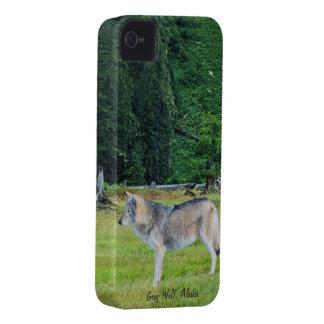 Lobo y caso de Alaska del iPhone 4 del arte de la Carcasa Para iPhone 4 De Case-Mate