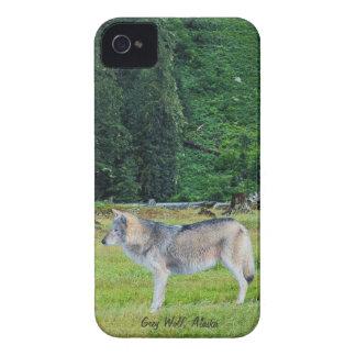 Lobo y caso de Alaska del iPhone 4 del arte de la Funda Para iPhone 4 De Case-Mate