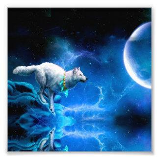 Lobo y luna fotografías