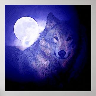 Lobos azules de la noche de la impresión cuadrada póster