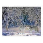 Lobos de la postal de Yellowstone