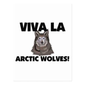 Lobos del ártico del La de Viva Postales