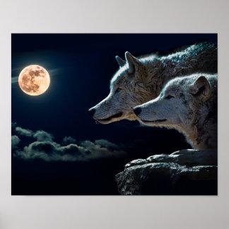 Lobos del lobo que gritan en la Luna Llena Póster