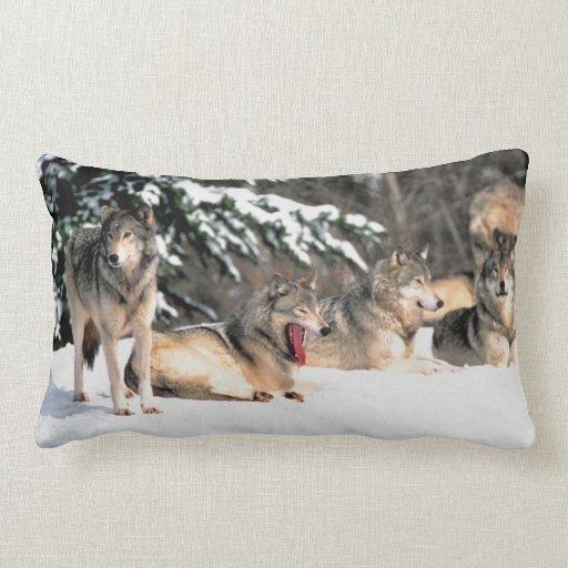 Lobos en almohada del Lumbar   de la nieve