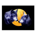 Lobos en la Luna Llena Postal
