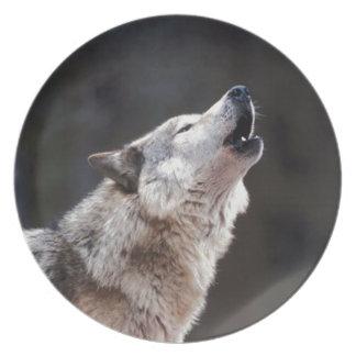 Lobos en placa fotográfica de la nieve plato para fiesta