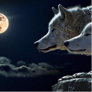 Lobos Escultura Fotográfica
