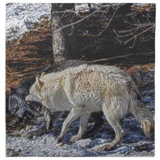 Lobos grises que luchan servilletas de papel